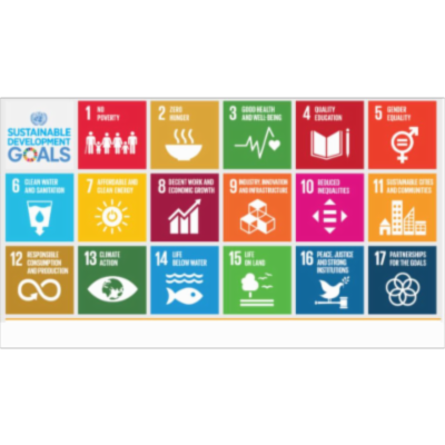 Sustainable development goals - United Nations icon