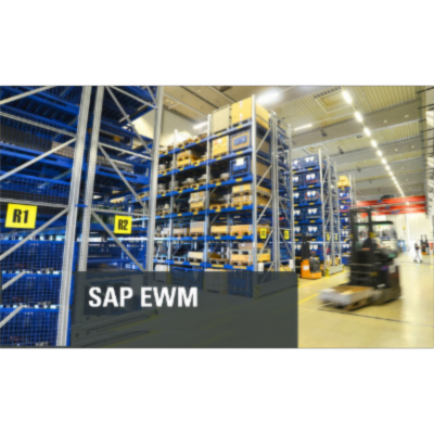 SAP courses self paced online created by industry experts icon