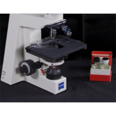Learn The Compound Microscope | Open Oregon State