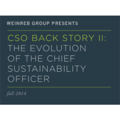 CSO BACK STORY II: THE EVOLUTION OF THE CHIEF SUSTAINABILITY OFFICER icon
