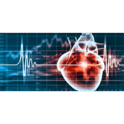 Heart Murmur? Listening For Heart Sounds (With Audio) - Ausmed icon