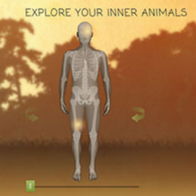 Review: Explore Your Inner Animals | HHMI...