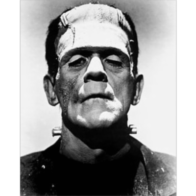 Mary Shelley's Frankenstein icon