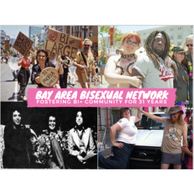 Bay Area Bisexual Network icon