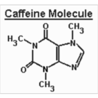 The Many Effects of Caffeine icon