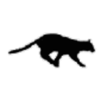Bob's Cat Dissection Websight icon