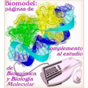 Biomodel-3: Structural Biochemistry for Secondary School