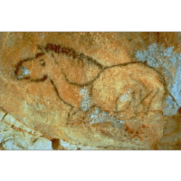 The Cosquer Cave icon