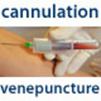 Cannulation and Venepuncture