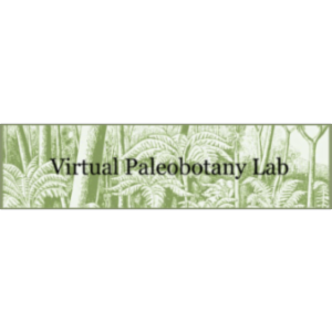 Virtual Paleobotany Lab icon