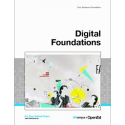 Digital Foundations icon