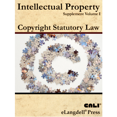 United States Copyright Law icon