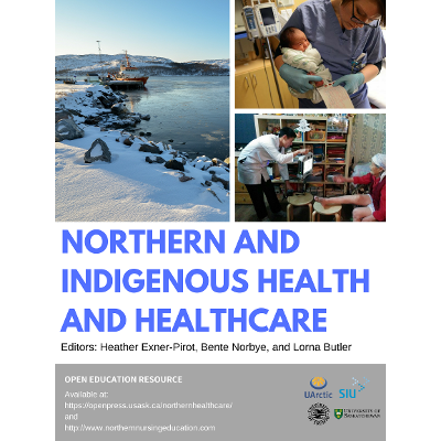 Northern and Indigenous Health and Healthcare icon
