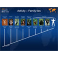 Primate Evolution – Family Ties icon