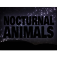 Nocturnal Animals icon