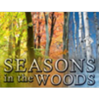 Seasons in the Woods icon