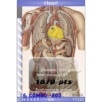 Speed Anatomy Quiz App for Android