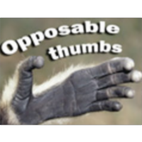 Opposable Thumbs icon