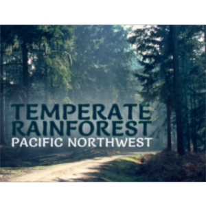 Temperate Rainforest in the Pacific Northwest icon
