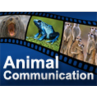 Animal Communication icon