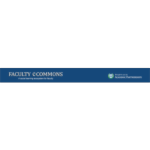 Faculty e-Commons