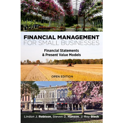 Financial Management for Small Businesses: Financial Statements & Present Value Models icon