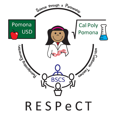 RESPeCT PD materials and K-6 lesson modules icon