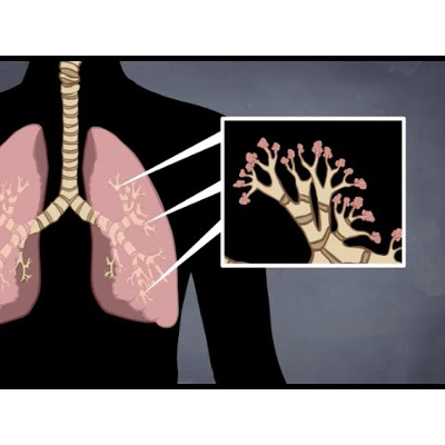 Respiratory System Animated Rap Song (How And Why We Breathe) icon