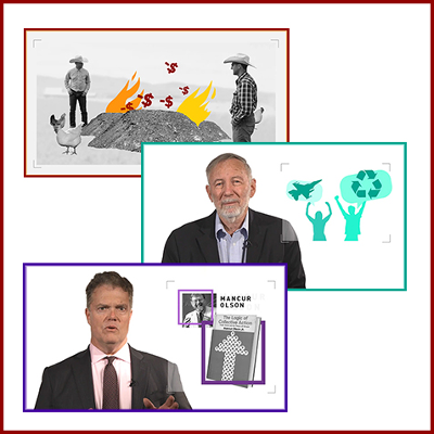 Philosophy, Politics, Economics Video Series and Digital Curriculum Resources