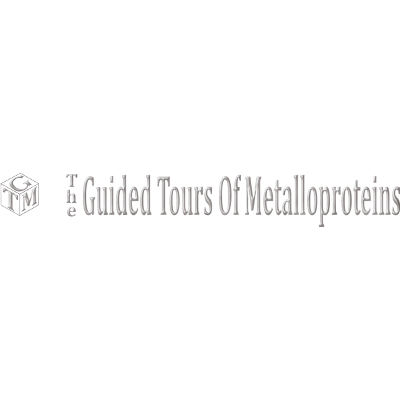 The Guided Tours of Metalloproteins (GTM)