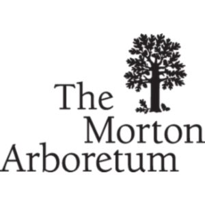SearchMOR: the integrated plants database of The Morton Arboretum icon