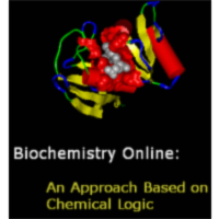 Biochemistry Online:  An Approach Based on Chemical Logic