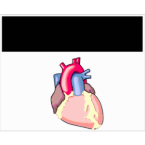 Ventricular Arrhythmias icon
