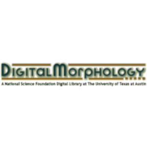 Digital Morphology icon
