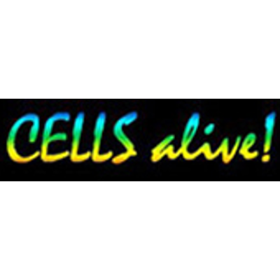 Everything You Want to Know About Cells