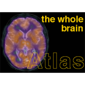 The Whole Brain Atlas icon