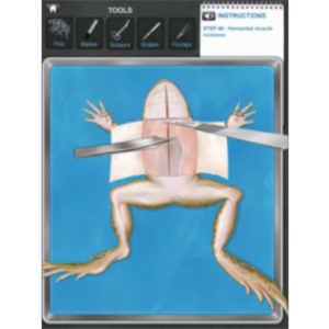 Frog Dissection App for Android icon
