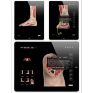 Ankle and Foot Pro III App for iPad icon