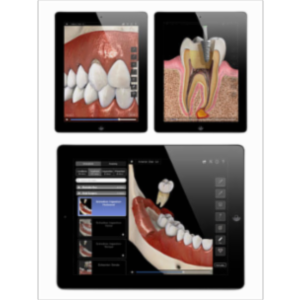Dental Patient Education Lite App for iPad icon