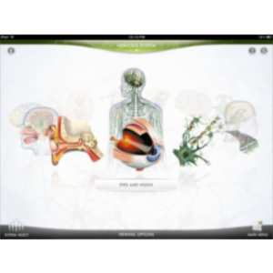 DK The Human Body App for iPad icon