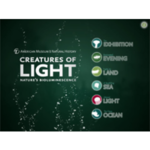 Creatures of Light App for iPad icon