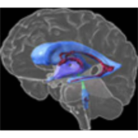 Genes to Cognition Online icon