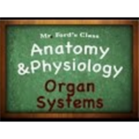 Introduction Anatomy Physiology (01:04): Organ Systems icon