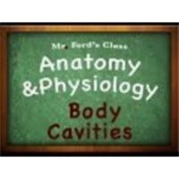 Introduction Anatomy Physiology (01:07): Body Cavities