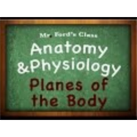 Introduction Anatomy Physiology (01:08): Planes of the Body icon