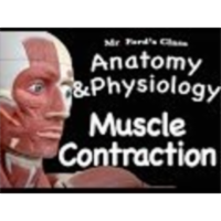 The Muscular System : Types of Muscle Contraction (09:07) icon
