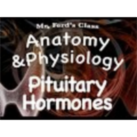 The Endocrine System : Pituitary Hormones (12:04) icon