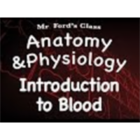 The Cardiovascular System : Introduction to Blood (13:01) icon