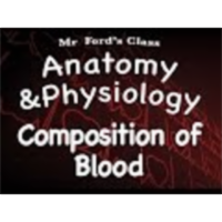The Cardiovascular System : Composition of Blood (13:02) icon