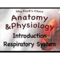 The Respiratory System : Introduction Respiratory System (16:01) icon
